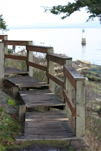 Some of the walks are Jack point are beautifully built wooden walkways.