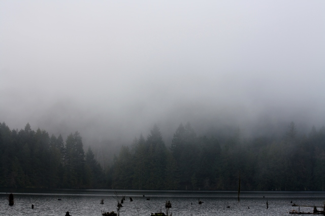 When we arrived the other side of the lake was cloaked in fog.