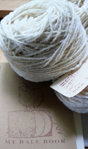 Great White Bale notebook for notetaking and observations, and yarn ready to knit!