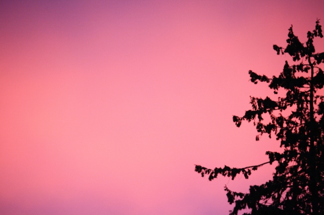 The sky really was this colour - amazing!