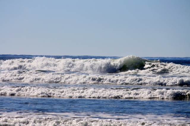 The Waves keep rolling in, and in, and in.....