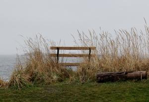 A cold morning walk at Piper's Lagoon this morning!