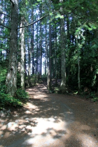 Entering Holland Creek Park - from the top of the Ravine.