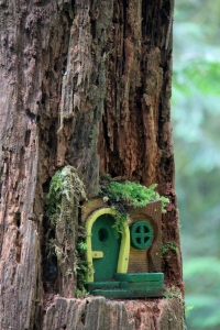 Magic is to be found on the Yew Loop - Gnome homes are seen all along the walk.