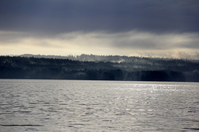 Looking across from Piper's to Gabriola! Rising from the Ocean and mists.