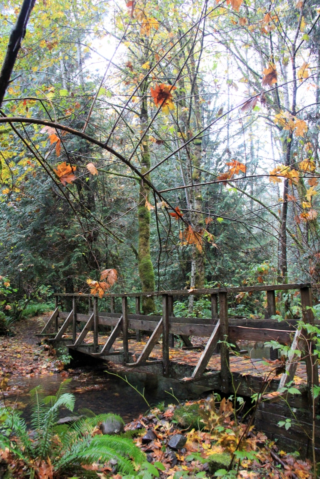 A bridge in Linley Valley - a Rustic note to compliment the Fall colours.