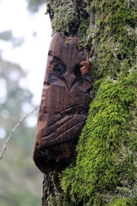 A carving of an Owl nestles into the mosses on the trunk of a tree.
